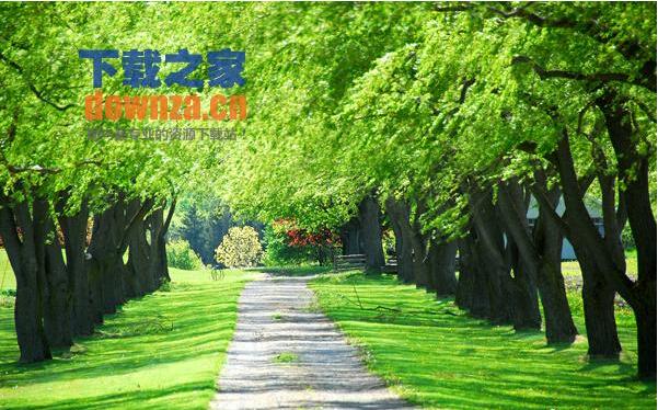 绿色高清风景精品壁纸有多种分辨率的,1440*900,1600*1200,1920*1200